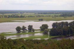 Hochwasser an der Elbe